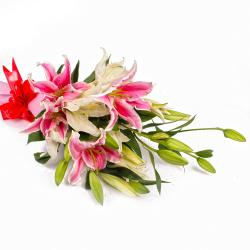 Dozen Mix White and Pink Lilies in Tissue Wrapped