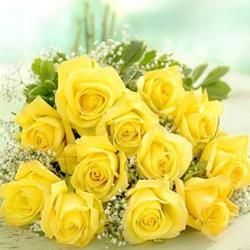 Dozen Yellow  Roses Bouquet