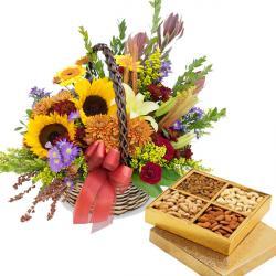 Dryfruit Flowers Pack