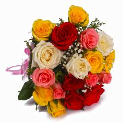 Eighteen Colored Roses in Cellophane Wrap Bunch
