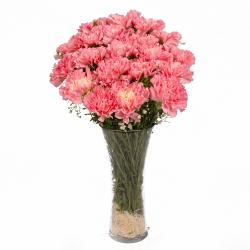 Eighteen Pink Carnations in Glass Vase