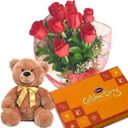 Enticing Roses With Teddy and Chocolates