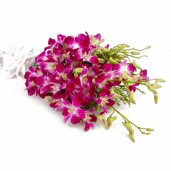 Exotic 10 Purple Orchids Hand Tied Bunch