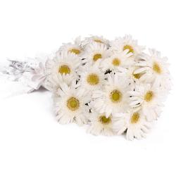 Fabulous Fifteen White Gerberas Bouquet with Tissue Packing