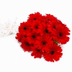 Fantastic Fifteen Red Gerberas Bouquet