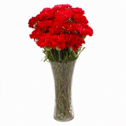 Fantastic Vase of 15 Red Carnations