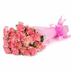 Fifteen Baby Pink Carnations Tissue Packed