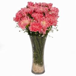 Fifteen Pink Carnations in Glass Vase