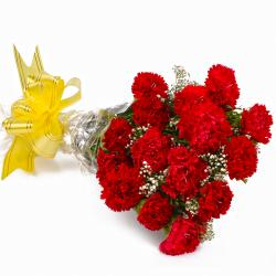 Fifteen Red Carnations Cellophane Wrapped Bunch