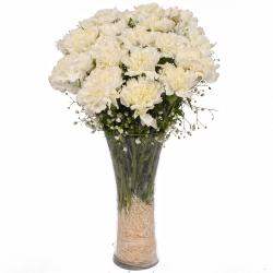 Fifteen Stems of White Carnations in a Vase