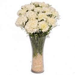 Fifteen White Carnation in Classical Vase