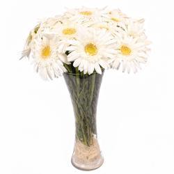 Fifteen White Gerberas in Glass Vase