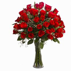 Fifty Red Roses Arranged in Vase