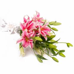 Five Pink Lilies Hand Bunch with Cellophane Packing