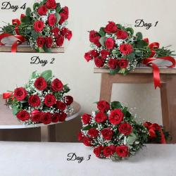 Four Days Delivery of Fresh Red Roses
