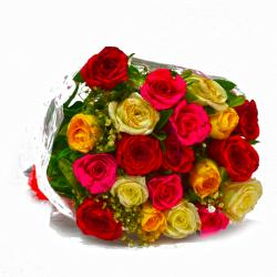 Fresh 20 Multi Color Roses Hand Bunch