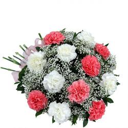 Fresh Pink and White Carnations Bunch