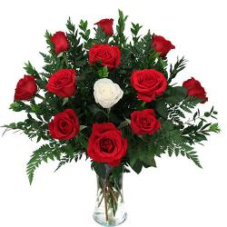 Fresh Red Roses and white Rose In Vase