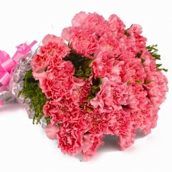 Fuffly Pink Carnation Bouquet