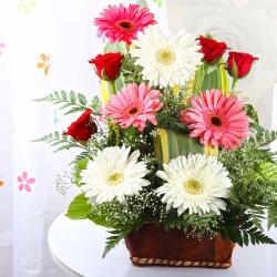 Gerberas and Roses in a Basket