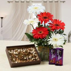 Gerberas Vase and Assorted Dry Fruits with Cadbury Fruit N Nut Chocolates
