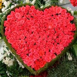 Giant Heart Shape Arrangement of 200 Roses