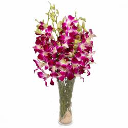 Glass Vase of 10 Purple Orchids
