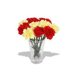 Glass vase of red and yellow Carnations