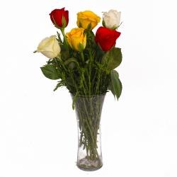Glass Vase of Six Multi Color Roses