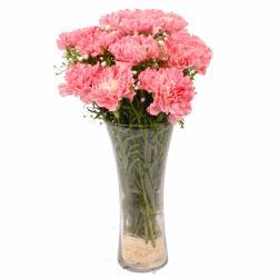 Glass Vase of Ten Baby Pink Carnations