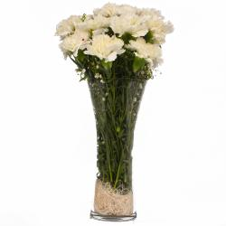 Glass Vase of Ten Bright White Carnations