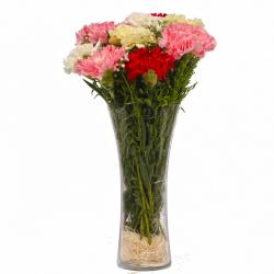 Glass Vase of Ten Mix Color Carnations