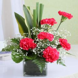 Glass Vase with Six Pink Carnation