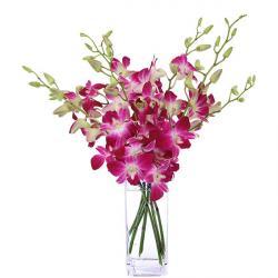 Gorgeous Orchids  Vase