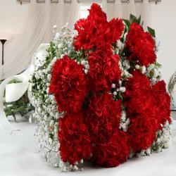 Hand Bouquet of Red Carnations
