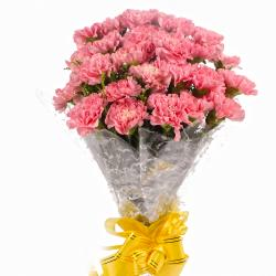 Hand Bunch of 24 Pink Carnations