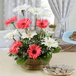 Kaju Katli Sweets with Ten Gerberas Arrangement