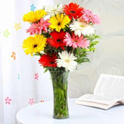 Mix Gerberas in a Glass Vase