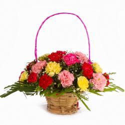 Multi Color 24 Carnations Basket Arrangement