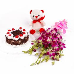 Orchids with Teddy Bear and Black Forest Cake