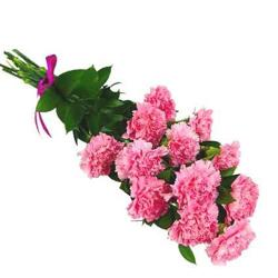 Pink Carnation Bouquet