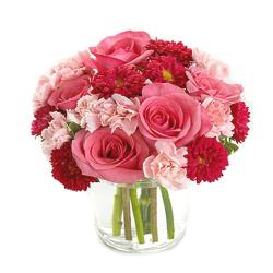 Pink Flowers Arranged in Vase