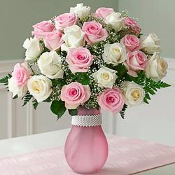 Popular Pink And White Roses