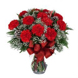Popular Red Carnations Vase