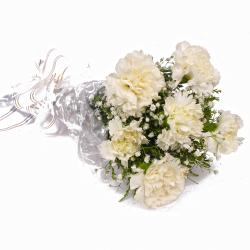 Pure White Six Carnations Bouquet