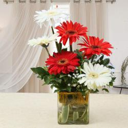 Red and White Gerberas in a Glass Vase
