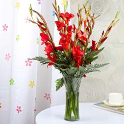 Red Glads in a Glass Vase
