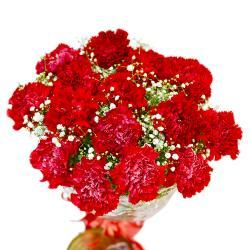 Romantic Fifteen Red Carnations Bouquet