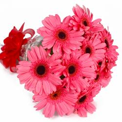 Send 10 Pink Gerberas Flowers Bouquet Online