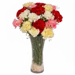Seventeen Mix Color Carnations Arranged in Vase